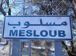 image-mesloub.jpg